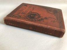 画像3: 1895年 アンティーク BOOK POPULAR ENTERTAINMENTS (3)