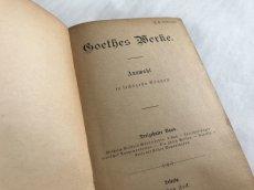 画像6: アンティーク洋書 Boethes Merfe 13-16 (6)