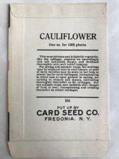 画像2: 1920年代 CAULIFLOWER SEED PACKAGE (2)