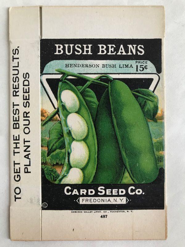 画像1: BOX 1920年代 BUSH BEANS  SEED PACKAGE  (1)