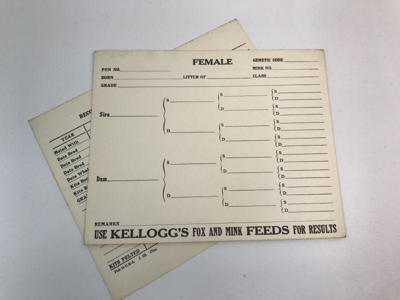 画像1: KELLOGG'S血統カード   (1)